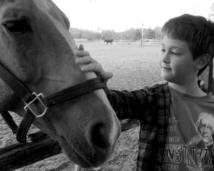 Nate Horse 2_bw.jpg
