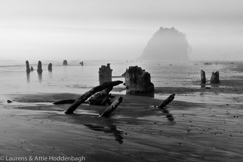 Petrified trees at South Beach with Proposal Rock after sunset at Neskowin, OR  Filename: CEM012293-Neskowin-OR-USA-Edit-EDIT-2.jpg