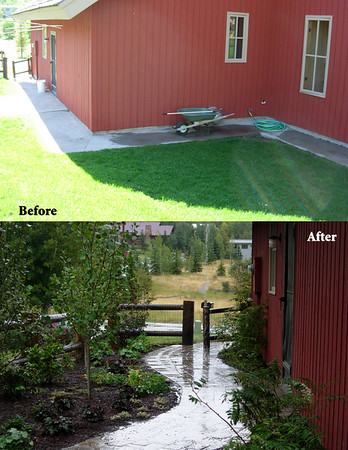 Before And After Landscapes