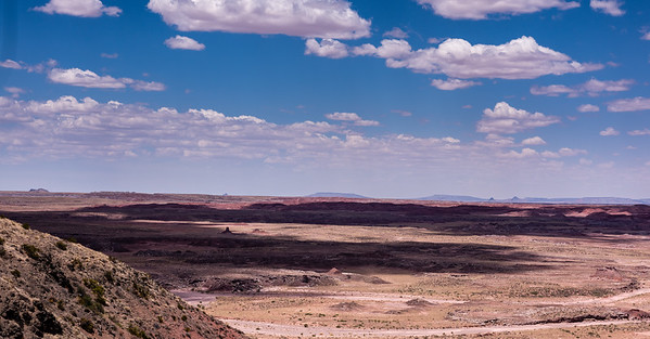 Painted Desert and Petrified Forest National Park