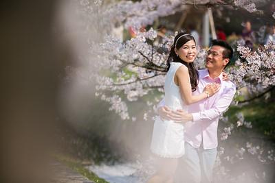 pre-wedding portfolio
