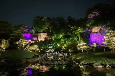 Japan Culture Tour 2019