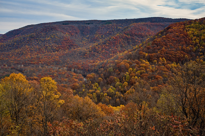 IMG_3751-OPScenicOverlook.jpg