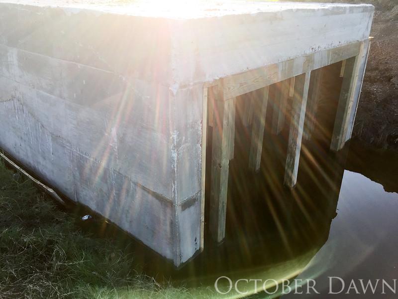 odphoto-2103.jpg