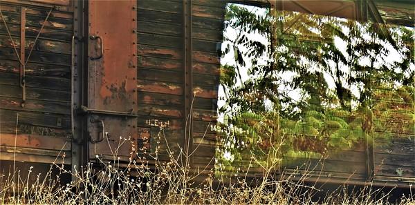 Athens-Thessaloniki by Train