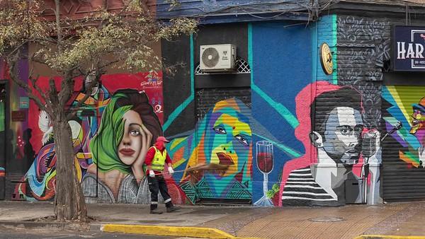 The Murals of Bellavista, Santiago, Chile