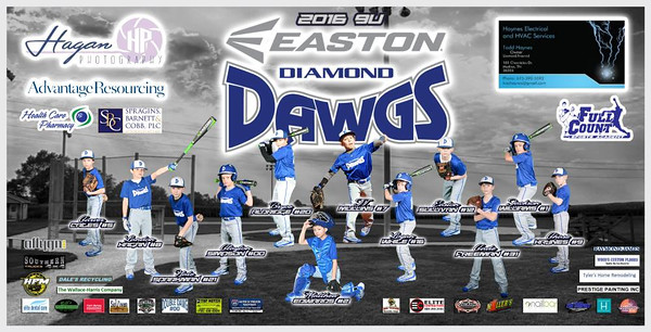 2016 Diamond Dawgs 9u Team Photos and Banner