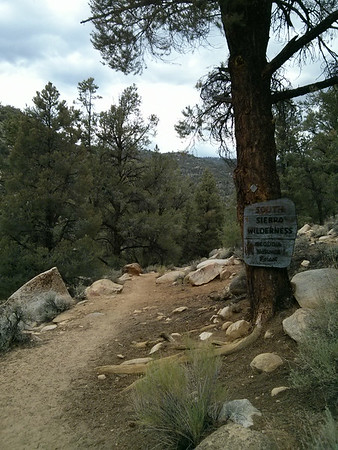 Another Pacific Crest Trail Ten-Miler - July 20, 2014