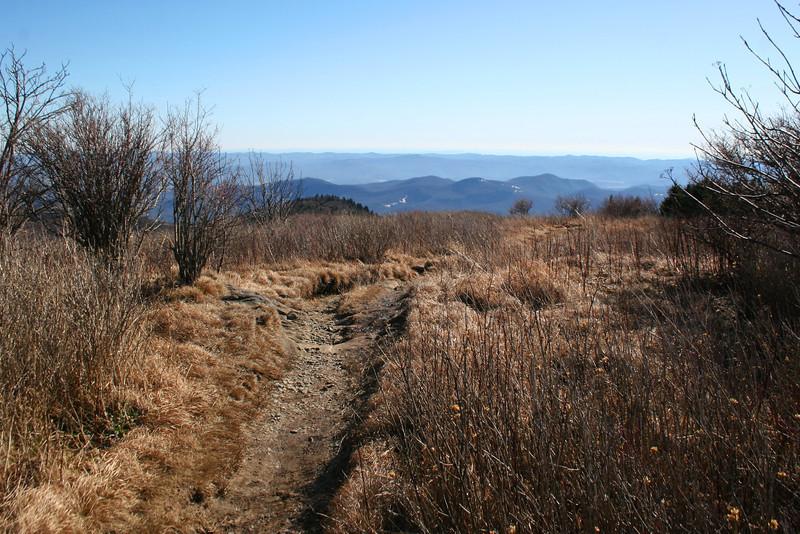 Art Loeb Trail -- 5,990'