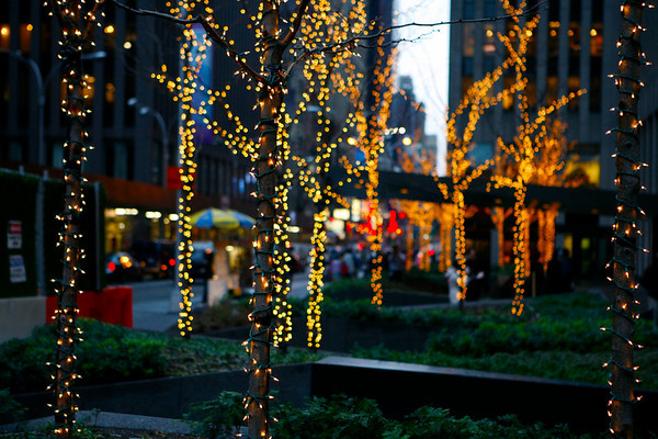 New York City (2007)