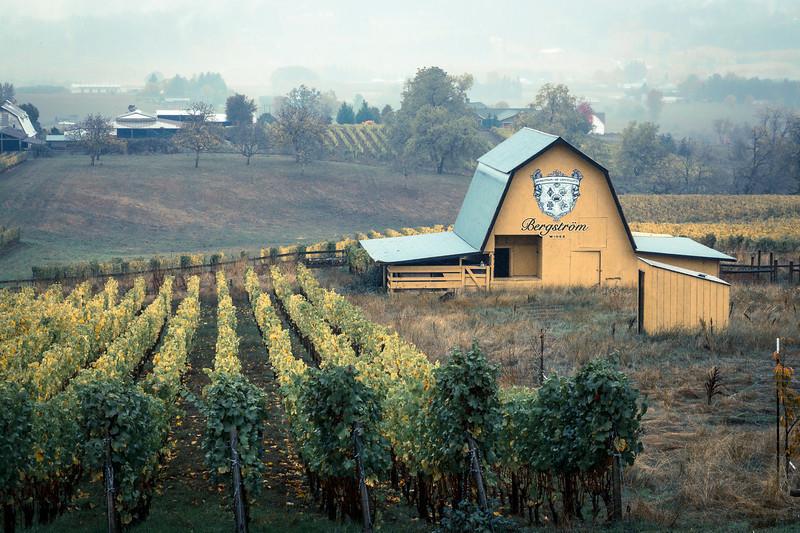 wineries-7399.jpg