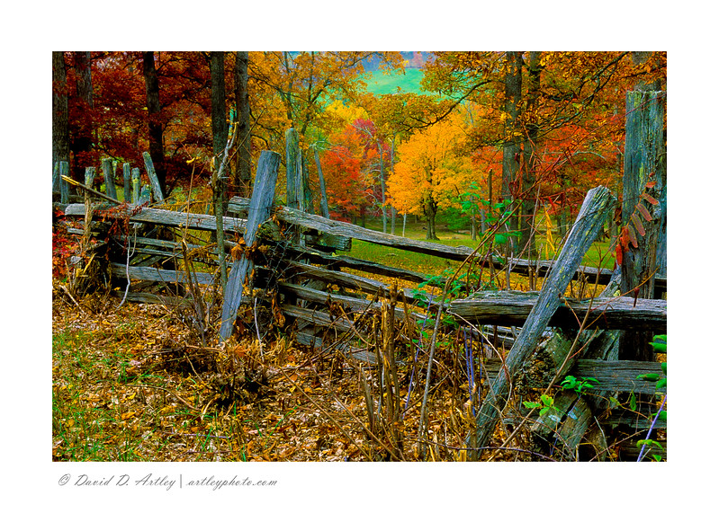 Rail Fence and autumn colors, Seneca, WV