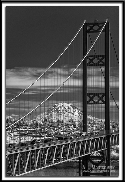 Tacoma Narrows Bridge - Infrared