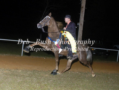 CLASS 32  WALKING HORSE CHAMPIONSHIP