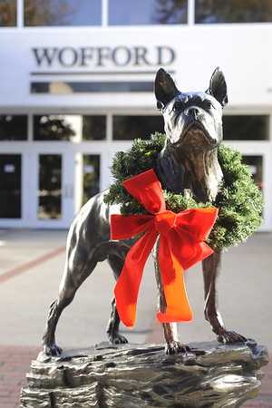 TerrierBronze Christmas Wreathed