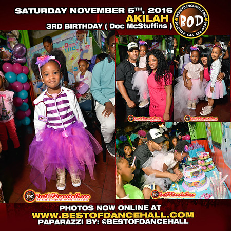11-5-2016-BRONX-Akilah 3rd Birthday Party