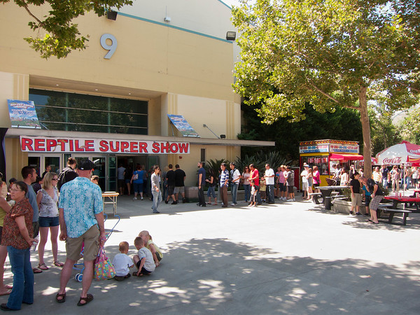 Reptile Supershow Aug. 2011