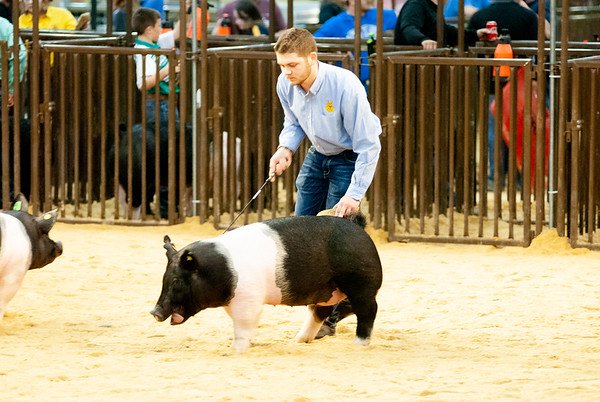 OYE Commercial Gilt Show Day 1