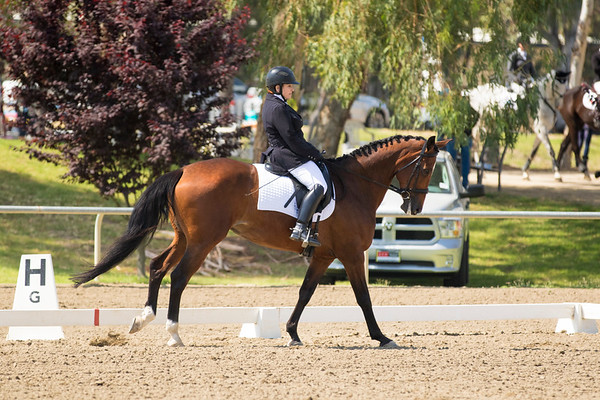 Galway Downs Spring Dressage