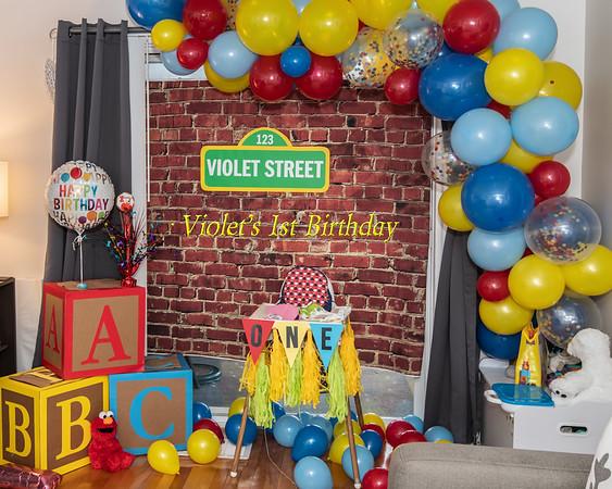 Violets_1st_Birthday