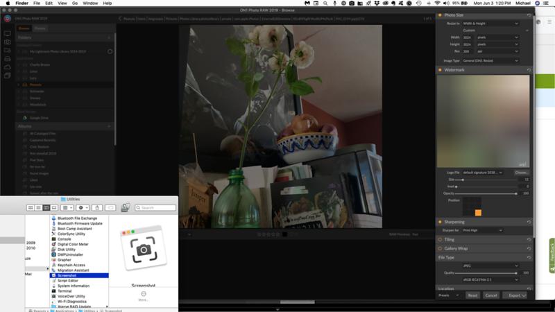 Screen Shot 2019-06-03 at 1.20.48 PM.png