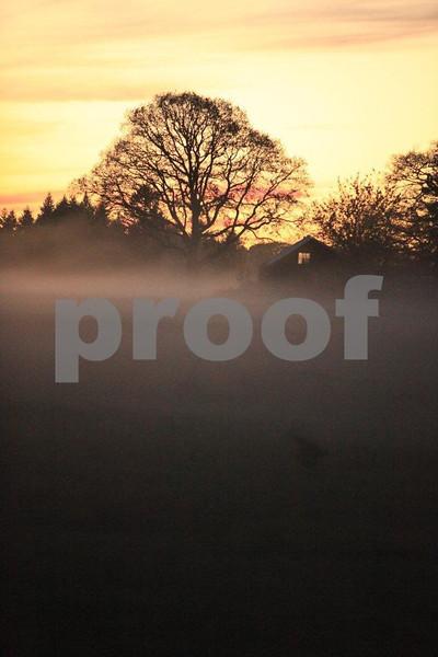 Ground fog 6548.jpg