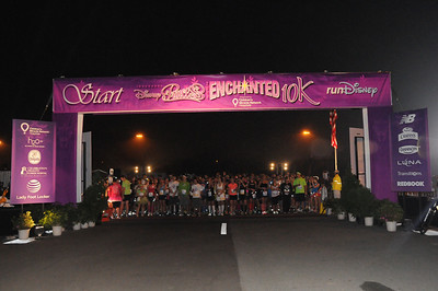 Disney Enchanted 10K 2014