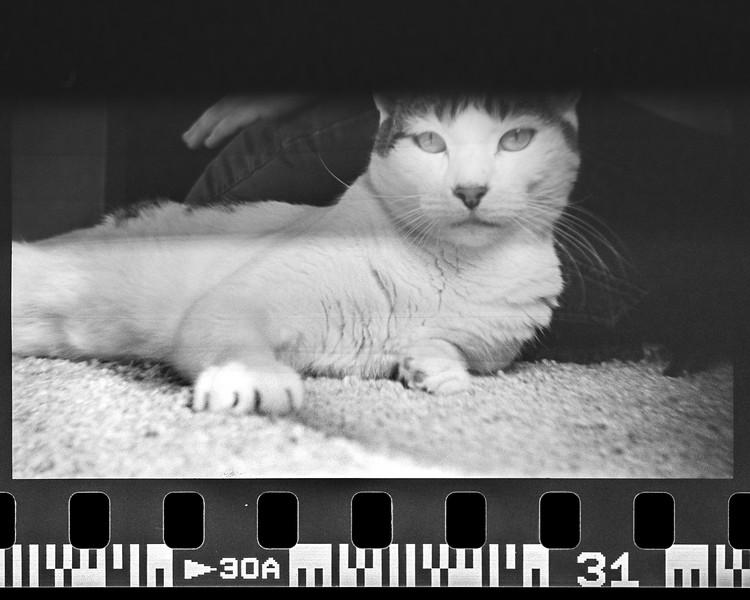 mark film scan-062.jpg