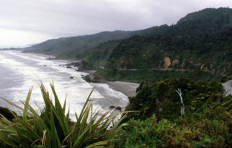 NZ_046.jpg