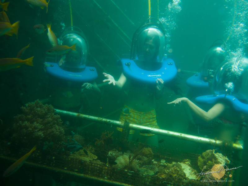 My fellow bloggers enjoying their chatter under the sea while sea walking