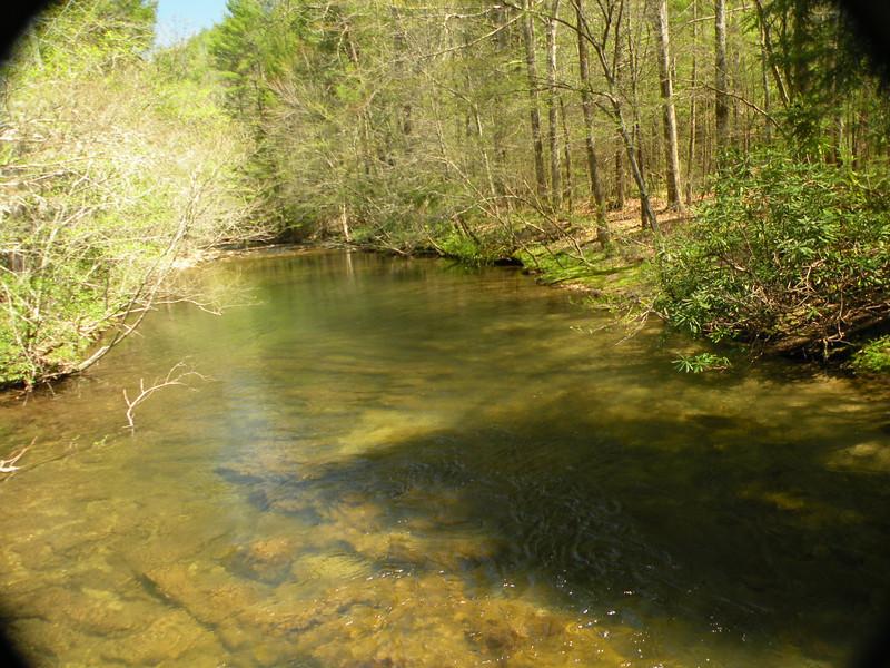 Cane Creek 227.jpg