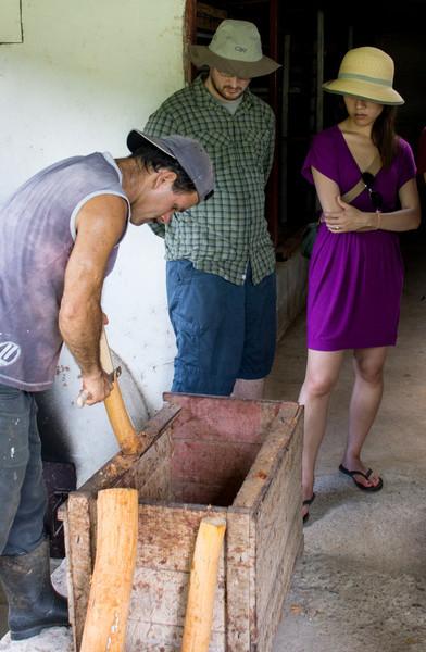 Cinnamon Bark Scrapings