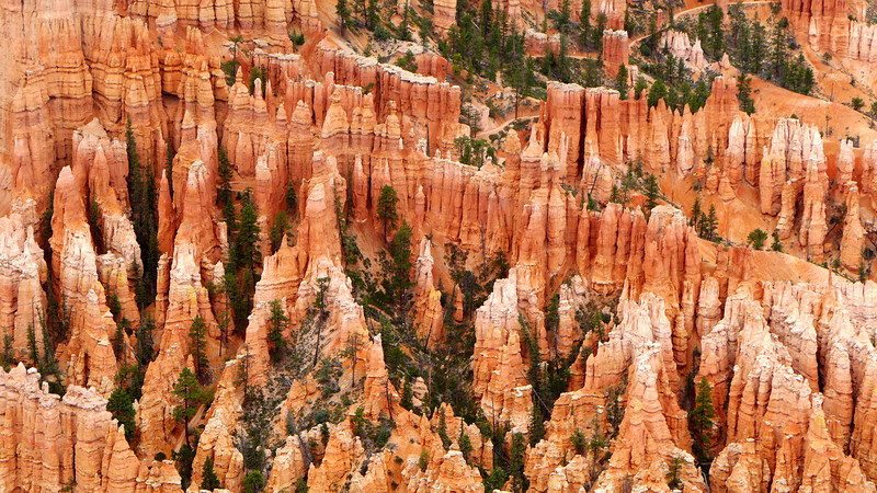 Bryce , Zion, and Kodachrome Basin