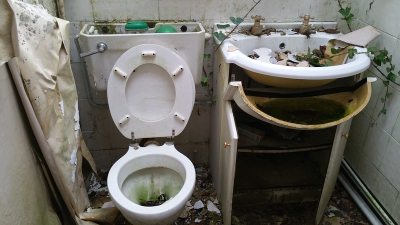 And a loo..maybe this was a Granny Annex.