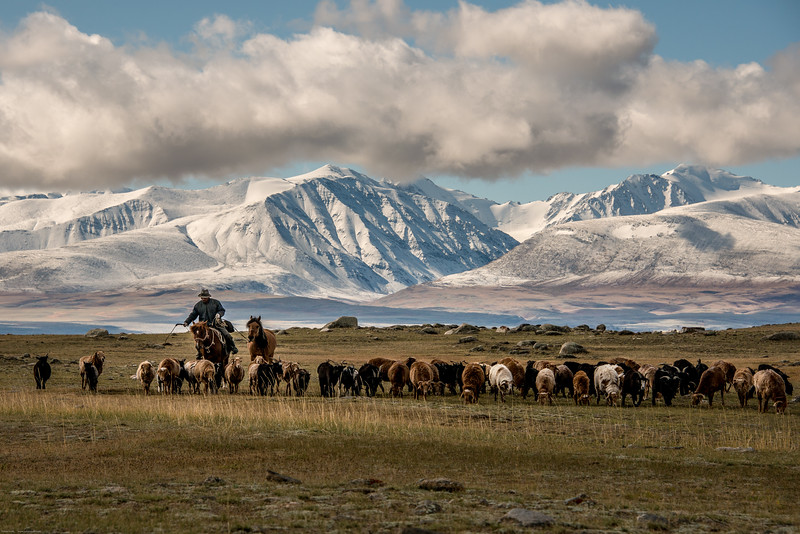 Mongolsko (11 of 15).jpg