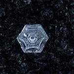 snowflakes-1551.jpg