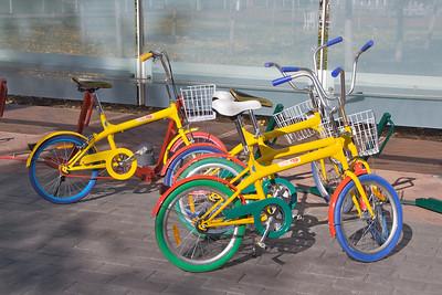 BayLeafs at Google Dec 3