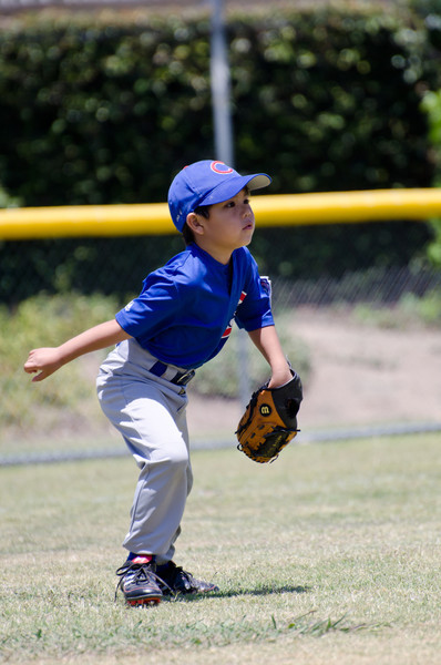 20110604 Cubs 017.jpg