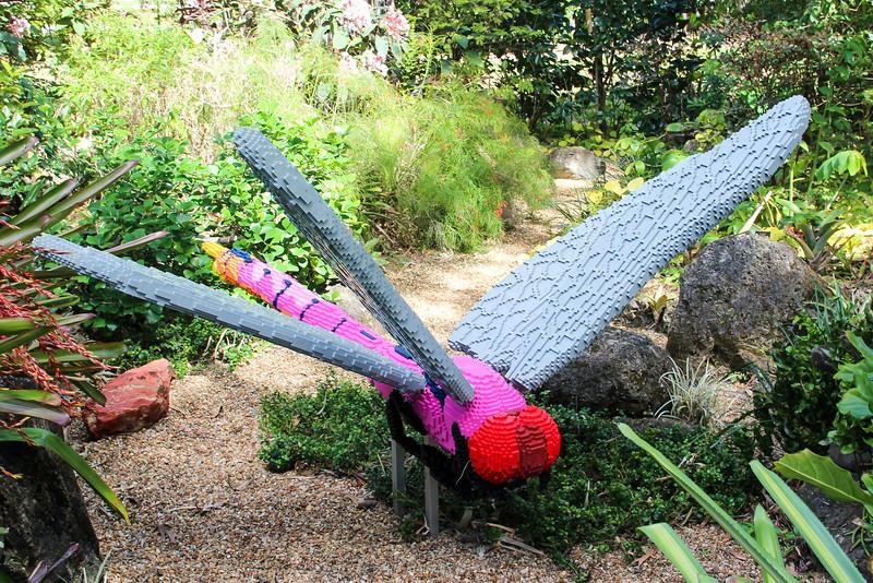 Roseate Skimmer Dragonfly