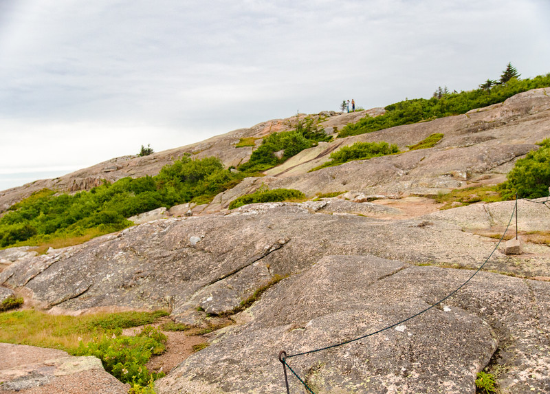 Acadia Nat'l Park-Terry's - July 2017-81.jpg