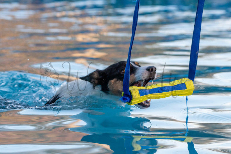 Friday Hydro Dash