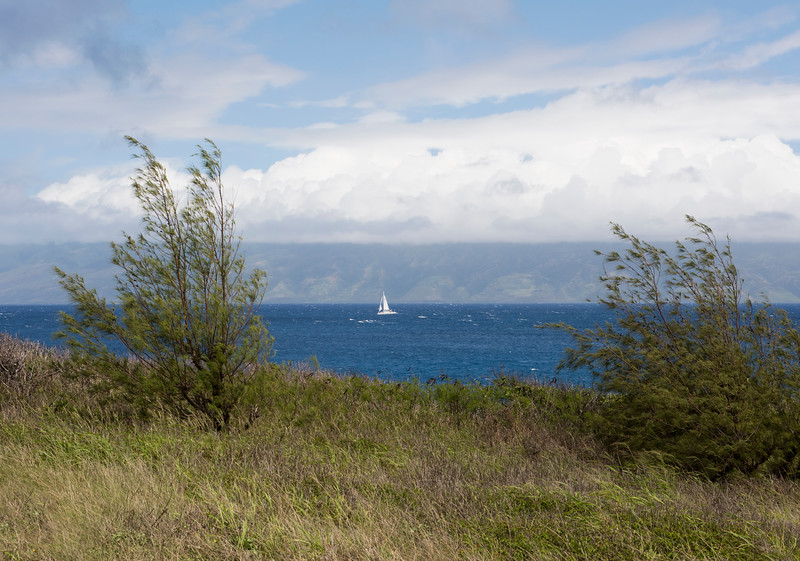 hawaii_0065.jpg