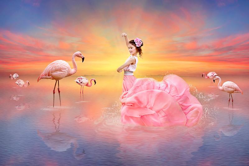 Sunset Flamingos Background.jpg