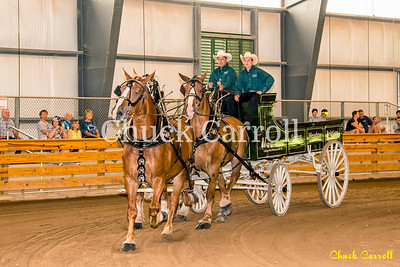 Unicorn & 4-Horse Hitch The 142nd Annual Centre County Grange Fair Friday 8-26-2016