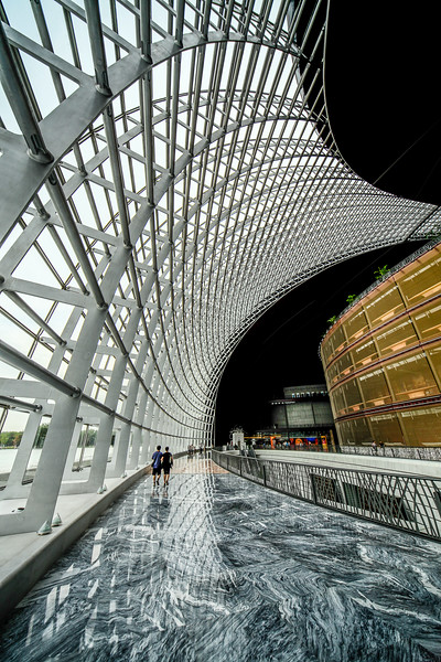 national center for the performing arts-2.jpg
