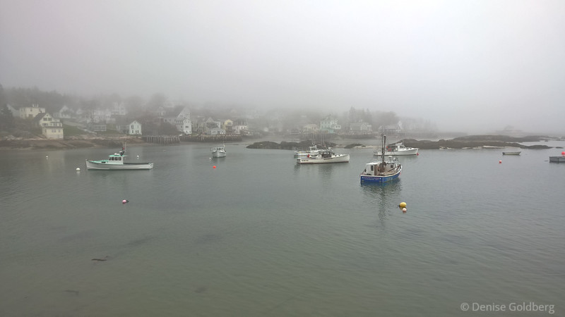 a foggy morning in Stoningon