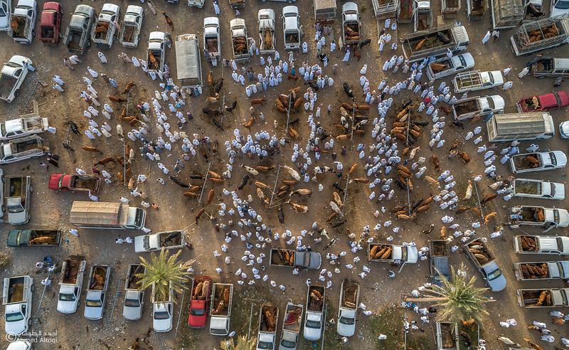 DJI_0003-1- Alrustq-Habtah- Oman.jpg