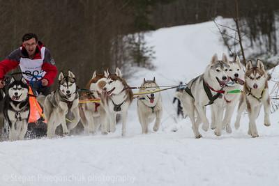 Husky races