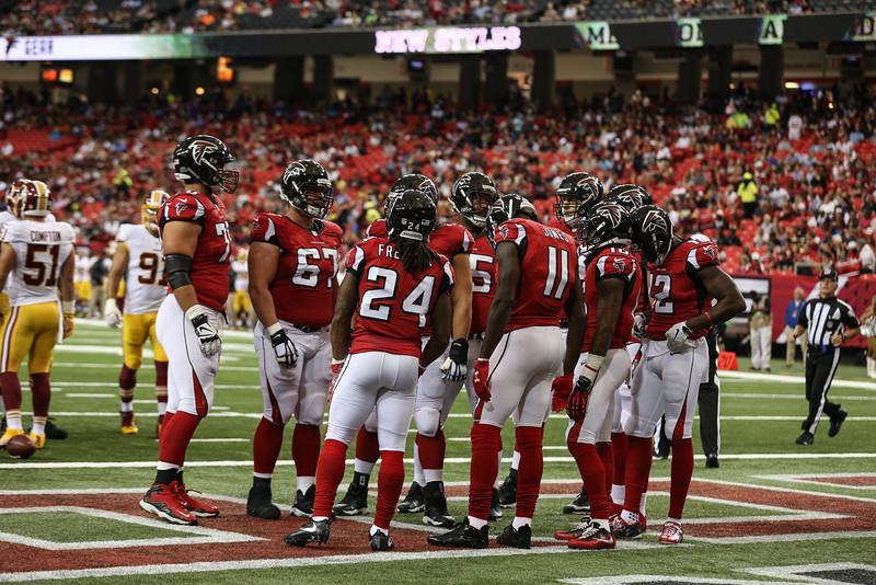 Falcons--6.jpg
