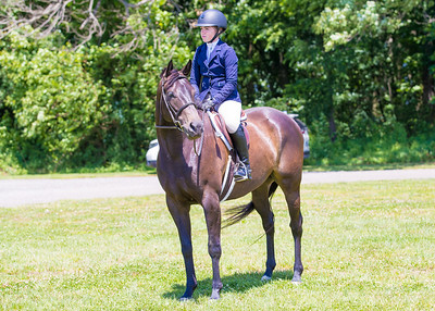 2019-06-09 Houghton's Horse Event